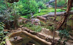 Blick in das frisch renovierte Wohnzimmer der Schildkröten im Vivarium. (Foto: Ronny Seifarth)
